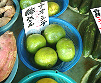 高知 日曜市 名物 直七(ナオシチ)