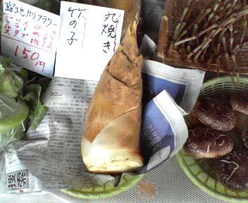 高知 日曜市 名物 筍(タケノコ)