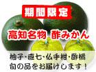 酢みかん(直七・なおしち)通販